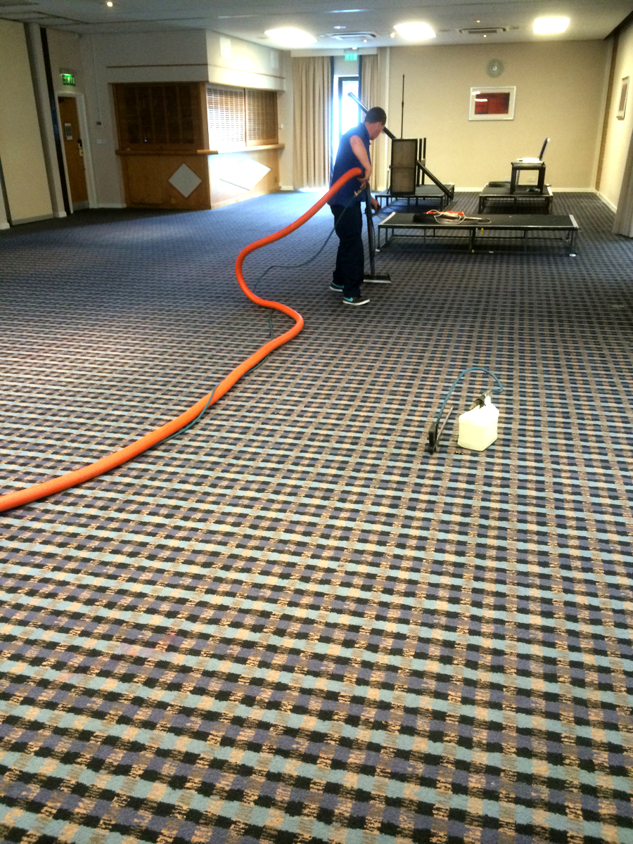 professional cleaning for carpets and rugs